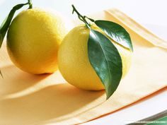 Manufacturer Of Lemon Natural Pure Buy OnlineLemon Essential Oil, extracted from the Citrus limonum of the Rutaceae family is offered by us....Price:$ 9.03