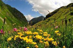 Trekking storico tra Svizzera e Italia - In Viaggio - ANSA.it