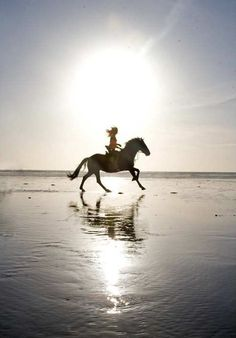 """In riding a horse, we borrow freedom"" ~Helen Thompson"