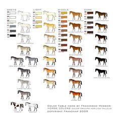 horse-colorsmap.jpg (827×827)