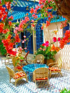 My bougainvillea never would do this. These blooms sure make this patio amazing doesn't it? The blue accents make this patio. Blue Patio, Outdoor Rooms, Outdoor Gardens, Outdoor Living, Outdoor Decor, Outdoor Furniture, Cane Furniture, Outdoor Lounge, Home Decor Ideas