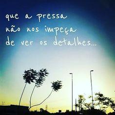 Bom dia sem perder a capacidade de apreciar o belo o justo e o bom :) #agentenaoquersocomida #avidaquer @avidaquer por @samegui