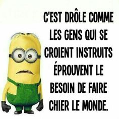 ... Citation Minion, Morning Jokes, Funny Times, French Quotes, Minions Quotes, Memes, Lol, Expressions, Messages