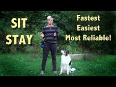 The easiest, fastest and most reliable SIT STAY- clicker dog training - Emily Larlham / Kikopup / Dogmantics