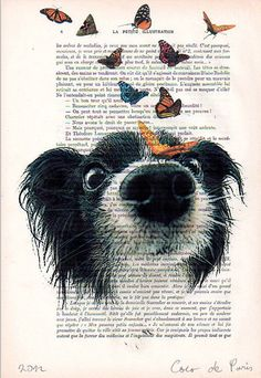 Doggy and butterflies Print Drawing Illustration Giclee