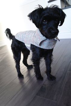 Tweed, Collars, Blazers, Plaid, Trending Outfits, Handmade Gifts, Grey, Dogs, Shop
