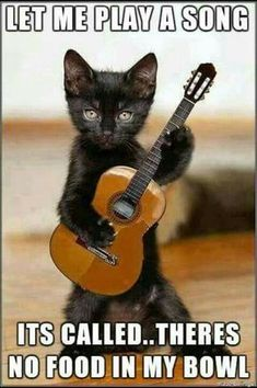 Let me play a song. It's called, there's no food in my bowl.
