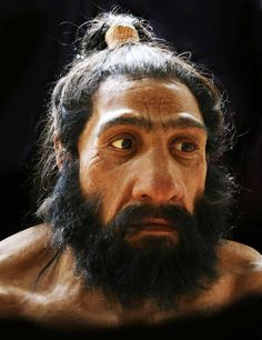 this is a facial reconstruction of a neanderthal based on a model of a skull, by John Gurche. i read an article that they've mapped the neanderthal genome, and could theoretically clone one, provided. Forensic Facial Reconstruction, Cage Thoracique, Anthropologie, Early Humans, Human Evolution, Before Us, Genetics, Ancient History, Portraits