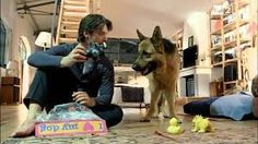 Rex German Tv Shows, My Favorite Things, Dogs, Fictional Characters, Animals, Police Officer, Animales, Animaux, Pet Dogs