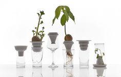 Root System: Ceramic Plant Funnels from Alicja Patanowska: Gardenista