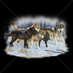 Native American Indian Wolf Pack in Snow Adult Unisex T Shirt 14377