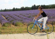 Lekker fietsen tijdens je vakantie in de Provence? Zie hier 5 prachtig fietsroutes door de Vaucluse. Langs wijnranken, Mont Ventoux, mooie dorpen en meer.