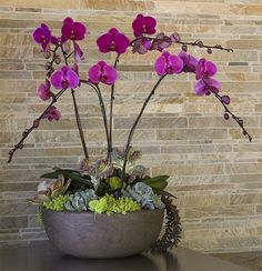 proflowers orchids reviews