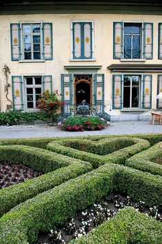 Heart boxwood