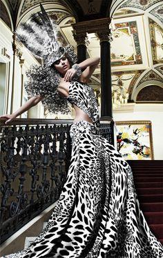 High Fashion & Model Portrait Photographers Shaun Alexander