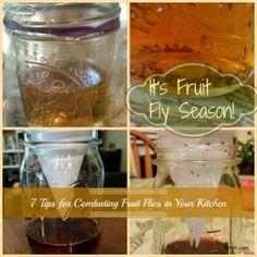 Fruit Fly Season http://thesurvivalmom.com/fruit-fly-season/
