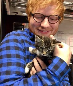 Ed Sheeran and a kitty Edward Christopher Sheeran, Hug Your Cat Day, Ed Sheeran Love, Animal Gato, Lauren Daigle, Cat People, Music Artists, Famous People, Cat Lovers