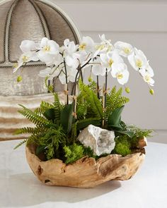 T & C Floral Company White Orchid Faux-Blumenarrangement in Holzschale - - . - T & C Floral Company White Orchid Faux-Blumenarrangement in Holzschale – – - Orchid Flower Arrangements, Orchid Centerpieces, White Floral Arrangements, Silk Orchids, White Orchids, Garden Types, Preserved Roses, Deco Floral, Wooden Bowls