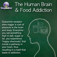 The Human Brain and Food Addiction from Young & Raw.  Yet most of the non-obese people will claim it's the fat people's fault.