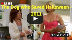 Streaming: http://movimuvi.com/youtube/L04xWlpodkdScXN0YUdTR2VpQ0Y5QT09  Download: MONTHLY_RATE_LIMIT_EXCEEDED   Watch The Dog Who Saved Halloween - 2011 Full Movie Online  #WatchFullMovieOnline #FullMovieHD #FullMovie #The Dog Who Saved Halloween #2011