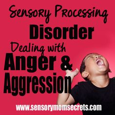 This is not a side of Sensory Processing Disorder that I like to talk about. In fact, it's one I've barely mentioned here on the blog. But, I would like to shed some light on it, for the few of us that have a child that is aggressive. And, just an FYI it is a …