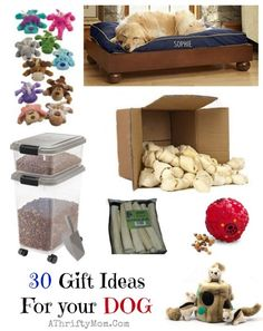 gift ideas for your