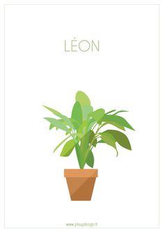 Biollywood - Léon (1994) #biollywood #plant #minimal #movie #leon