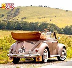 Volkswagen – One Stop Classic Car News & Tips Vw Classic, Ford Classic Cars, Cabrio Vw, Wolkswagen Van, Vw Beetle Convertible, Kdf Wagen, Vw Vintage, Ford Roadster, Volkswagen Bus