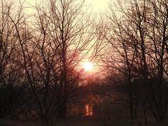 Sunwest by Romuald Statkiewicz
