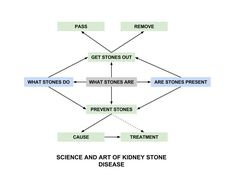 SCIENCE AND ART OF KIDNEY STONE DISE4ASE Kidney Stones, Big Picture, Getting Out, Health And Wellness, Medicine, Science, Theory, Art, Art Background