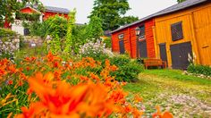 In Porvoo city centre is Holm House, which hosts seasonal exhibitions and boasts a stunning flower garden in its yard. Helsinki, Finland Culture, Finland Summer, Finland Travel, Old Town, Museum, Europe, Backyard, History