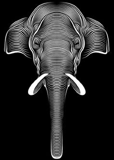 black and white elephant