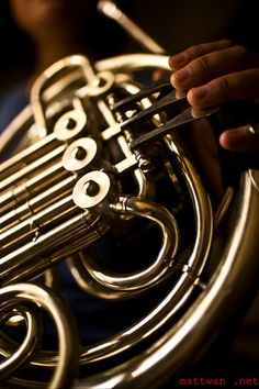 Musical Music Musical Instruments Sweater Pins:  French Horn Instruments REDUCED PRICE