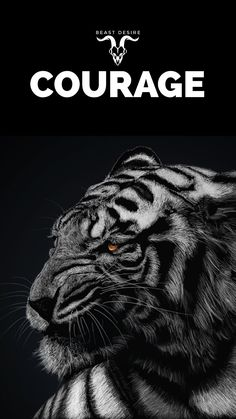 Tamil Motivational Quotes, Motivational Quotes Wallpaper, Wallpaper Quotes, Inspirational Quotes, Tiger Quotes, Lion Quotes, Beast Wallpaper, Lion Wallpaper, Animal Wallpaper
