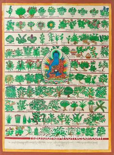 Thangka painting featuring Bhaisajyaguru, the master of remedies, sitting cross legged and surrounded by different herbs used by traditional Tibetan medicine Tibetan Art, Tibetan Buddhism, Mandala Drawing, Mandala Painting, Buddhist Symbols, Thangka Painting, Buddha Art, Ancient Art, Art Quotes