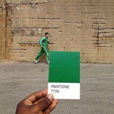 Los colores Pantone en el entorno   toppli