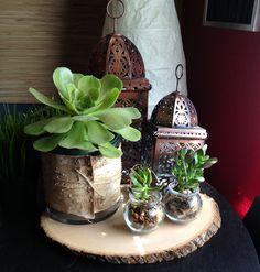 Birch Bark Wedding Centerpiece with succulents