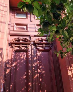 Puerta antigua y frutas .Asunción-Paraguay