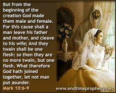 You will see the details of every components on those bible quotes about marriage and adultery images up there. Description from aclipart.com. I searched for this on bing.com/images