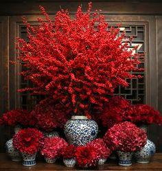 S is for Seeing Red Floral tip: Make a dramatic statement this holiday season with tall holly branches like Ilex. : S is for Seeing Red Floral tip: Make a dramatic statement this holiday season with tall holly branches like Ilex.