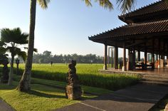 Fashion Gourmet: The Chedi Ubud - Bali Chedi Hotel, Plane Ride, Four Seasons Hotel, Ubud, Interior Architecture, Bali, Zen, Coffee, Plants