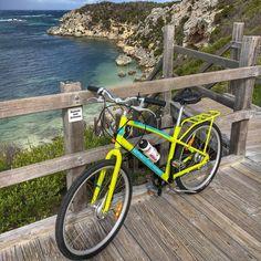 A different kind of cycle this Saturday  30km lap around Rottnest Island with some Sydney friends  #Perth #WA #Rottnest #Perthisok #Cycle #Triathlon #RottnestIsland #Australia #Garmin by water_mellen http://ift.tt/1L5GqLp