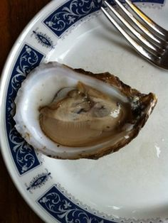 "Emma: ""You are what you eat"" certainly applies to oysters. Since oysters eat by extracting food from the water that filters through their shells, their taste is greatly affected by their living conditions. And since oysters must be kept alive from harvest to table, it supremely important to trust your oyster retailer. Blackberry Point oyster at Pub..."