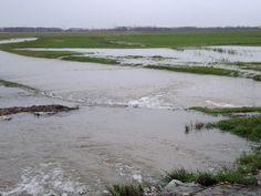 De Noordwaard functioneert goed en geeft ruimte aan de rivier - Gebr. van Kessel