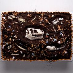 One easy trick shows you how to make edible dinosaur fossils for this paleontology dig cake! It's time to get digging for some historical treasure. One easy trick shows you how to make edible dinosaur fossils for this paleontology dig cake! Dinosaur Cake Easy, Dinosaur Dig, Dino Cake, Dinosaur Birthday Cakes, Dinosaur Fossils, Dinosaur Toys, Dinosaur Party, Cake Birthday, 22nd Birthday