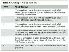 Image result for muscle strength scale