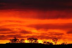 A fiery sunrise over The Outback. Batton Hill in the Northern Territory, Australia. Stunning.