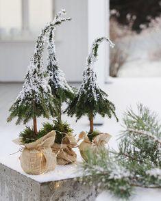 """Annette (@moa_home) on Instagram: """"Begynner å klø i fingra #juleforberedelser #jul2017  . Disse er fra #julen2016 #juletre #juletrær…"""""""