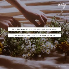 """""""The meaning of life is to find your gift. The purpose of life is to give it away."""" #dailydose #quote #inspiration"""