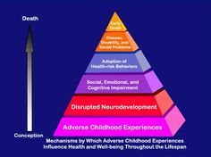 The Adverse Childhood Experiences Study -- the Largest Public Health Study You Never Heard Of, Part Three